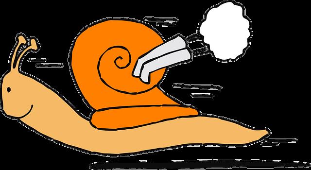 snail delay