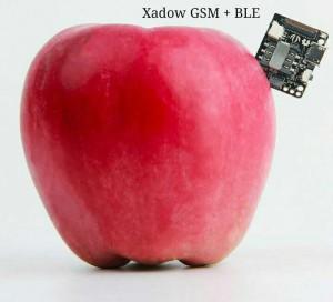 Xadow GSM +BLE