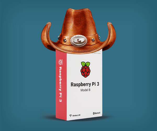 A dignified Raspberry Pi with its HAT.
