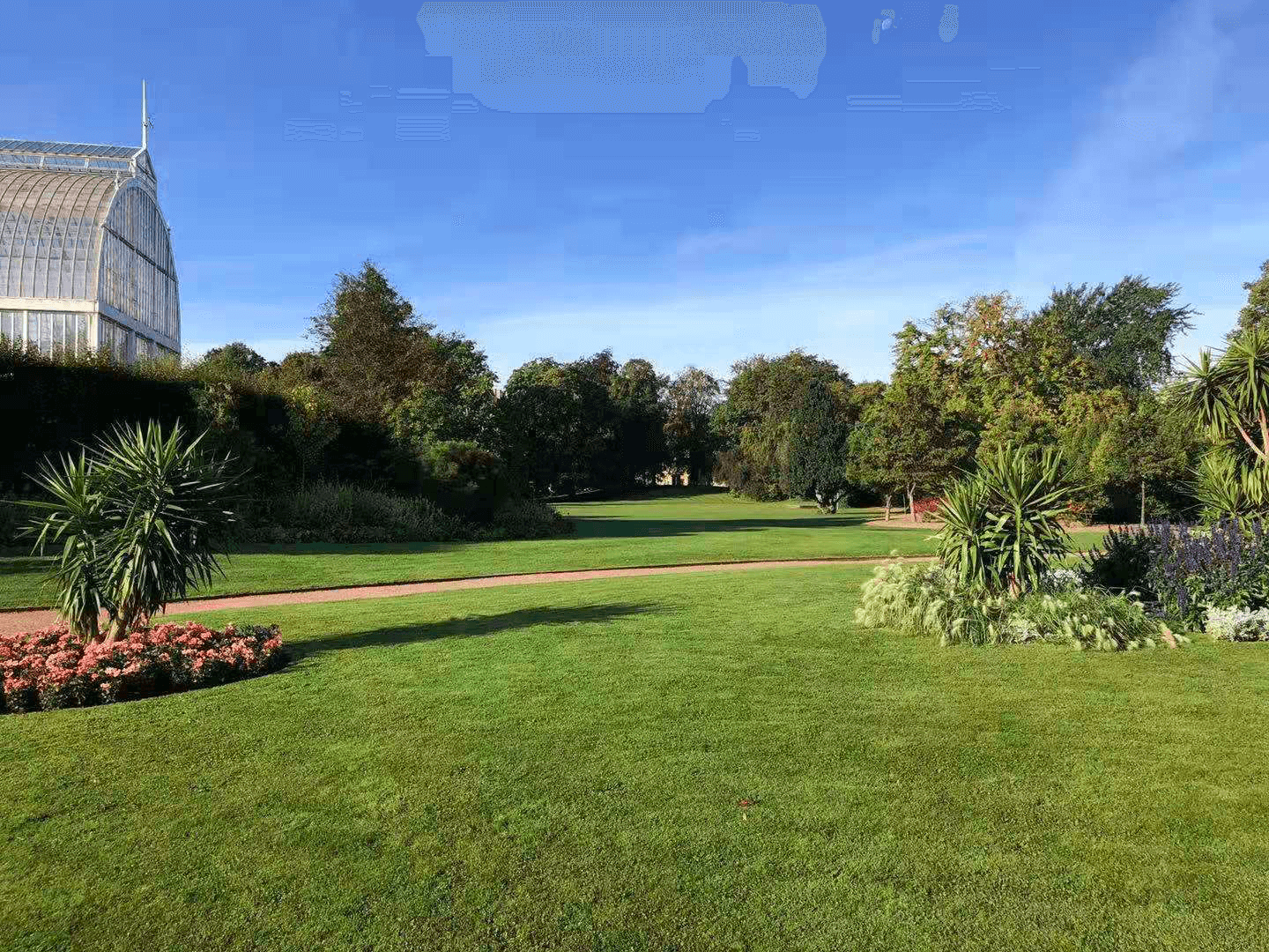 the public park where IoT wireless sensors are deployed to collect environmental data